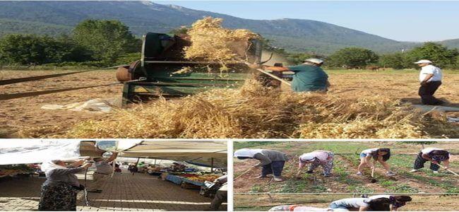 Çiftçisiz Çiftçiler Günü
